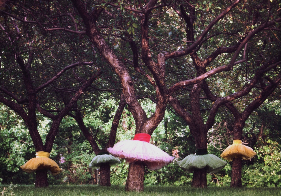 Ballet in the Park poster with trees dressed in authentic tutus