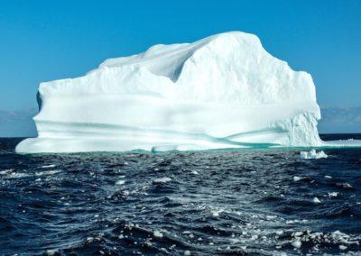 Icebergforwebsite